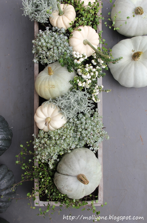 Muted greys and blues in this natural plant and pumpkin Thanksgiving centerpiece