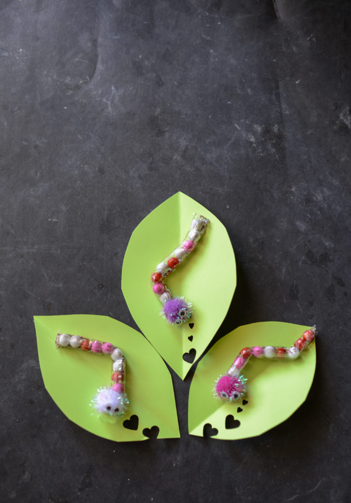 chocolate caterpillar love bug Valentines.